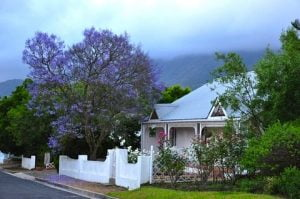 Moving house to South Africa